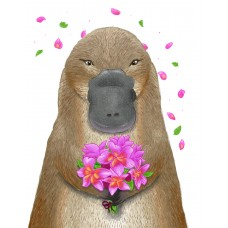 Platypus Bouquet