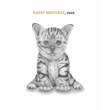 Kitten (Happy Birthday, Tiger)